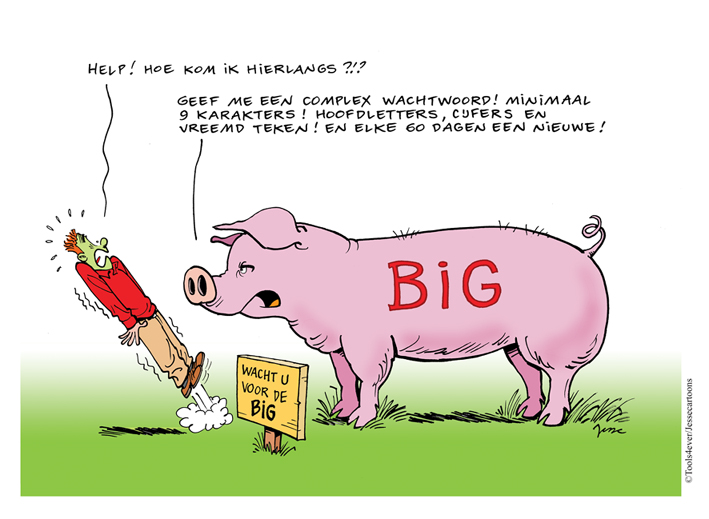 Cartoon BIG webversie
